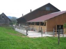 Stallanbau Schübelbach